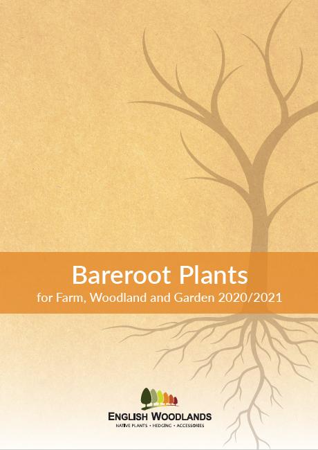 English Woodlands Bareroot Plants 2020/2021