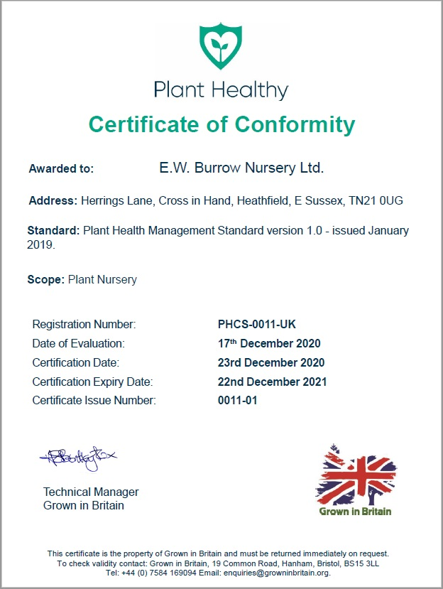 Plant Healthy Certification