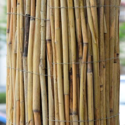 Bamboo Canes-120cm