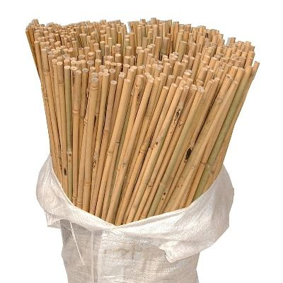 Bamboo Canes-90cm